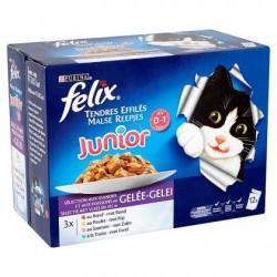 FELIX Junior Tendres Effi. gelée  12x100g